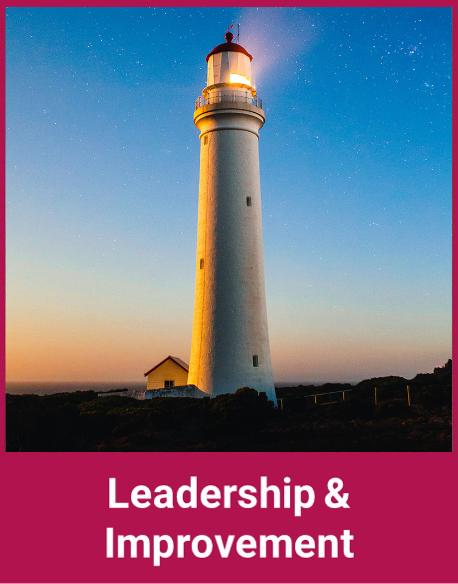 Leadership & Improvement Category