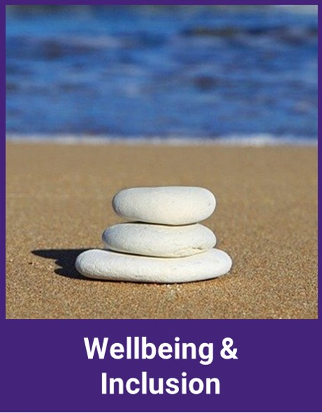Wellbeing & Inclusion category